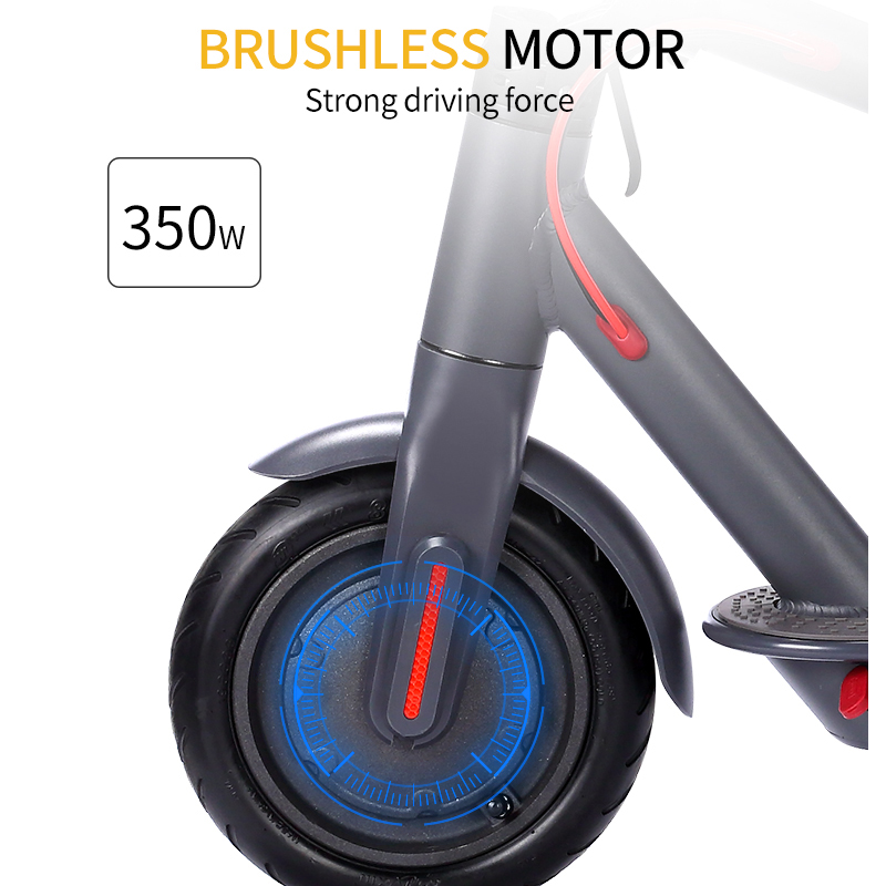 Electric Scooter ES-M365